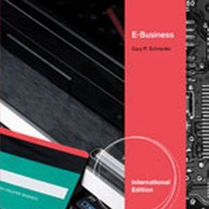 Solution Manual for E-Business